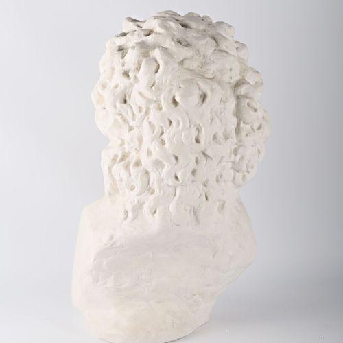 Reproduction en plâtre de la tête de Laocoon  XXème siècle  (infimes usures à la…