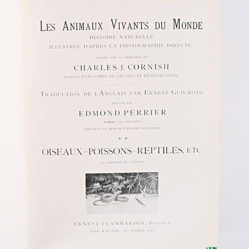 Lot de neuf ouvrages comprenant :   DUMAS Alexandre, Le Comte de Monte Cristo, P…