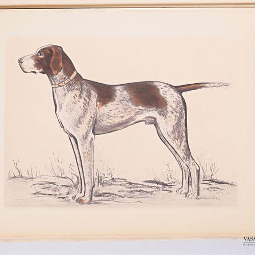 BENOIST Georges & MASSONET Paul Nos chiens de l'avenir Paris, Editions Arc en ci…
