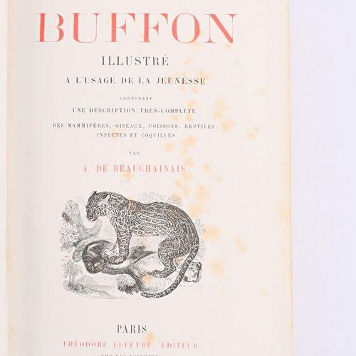 [JEUNESSE]  BEAUCHAINAIS A. De Le buffon illustré à l'usage de la jeunesse Paris…