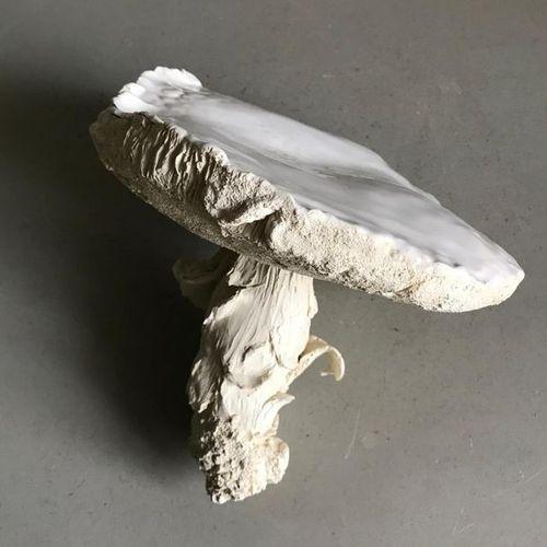 GOURDON Jean Paul GOURDON (1956) Cèpe Céramique partiellement émaillée Signé H. …
