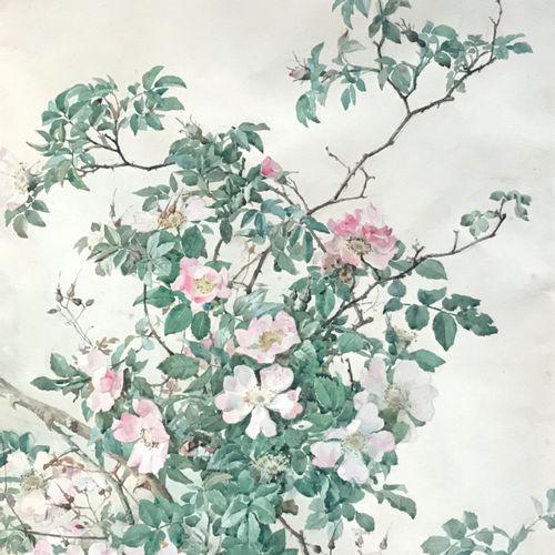 A. RENAUDIN Fin XIXe  Branches de rosier sauvage  Aquarelle sur papier  Signée e…