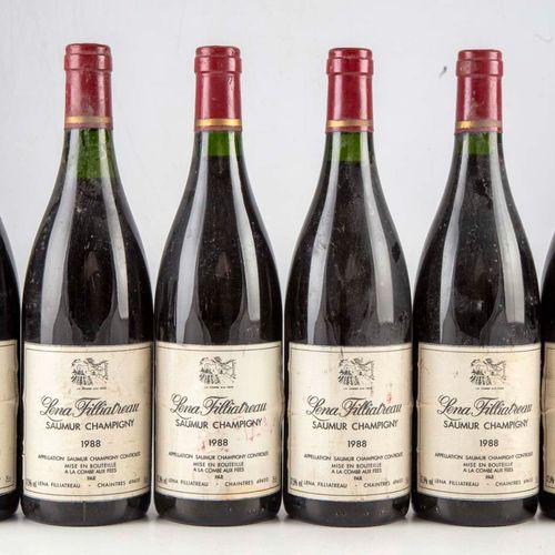 6 bouteilles Saumur Champigny 1988 Lena Filliatrau  Niveau bon  Etiquettes légèr…