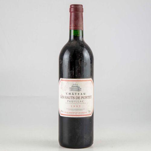 1 bouteille CHATEAU LES HAUTS DE PONTET 1995 Pauillac