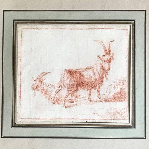 ECOLE FRANCAISE XIXe suiveur de François BOUCHER  Etude de chèvres  Dessin à la …