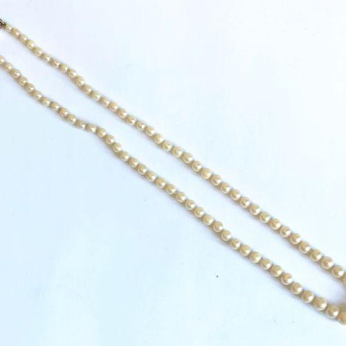 Collier de 81 perles de cultures en chute à fermoir plat rectangulaire en or jau…