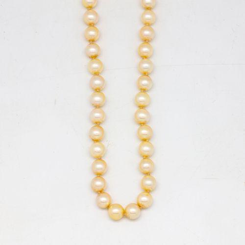 Long collier de perles de culture schoker, fermoir en or  Manque mousqueton et c…