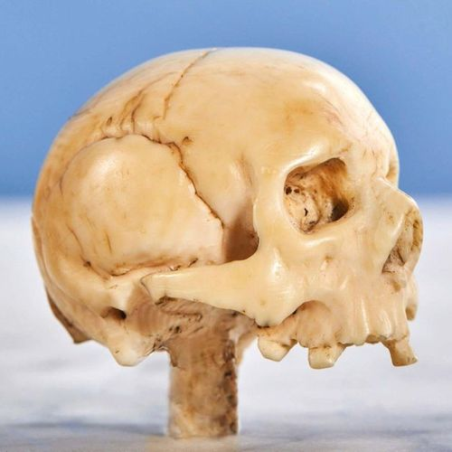 Carved ivory skull. 17th century Height: 3.8 cm Width: 4.5 cm Weight: 38 g