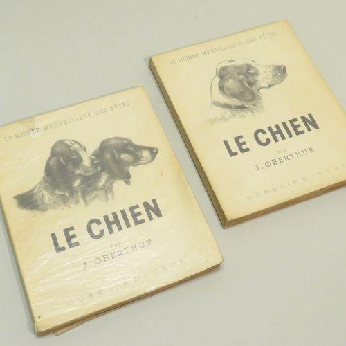 LE MONDE MERVEILLEUx DES BÊTES : LE CHIEN, par J.OBERTHUR (brochés ; In 4). Tome…