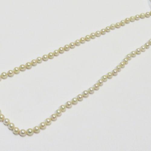 Collier de perles de culture de 6mm légèrements rosées présentant un bel orient …