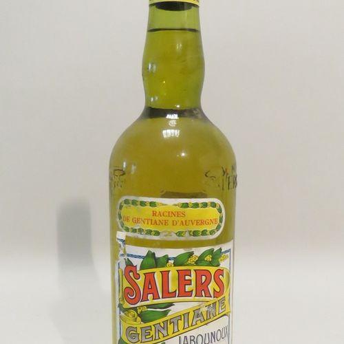 Gentian, Salers, Labounoux; Liqueur. 1 bottle of 100 cl.