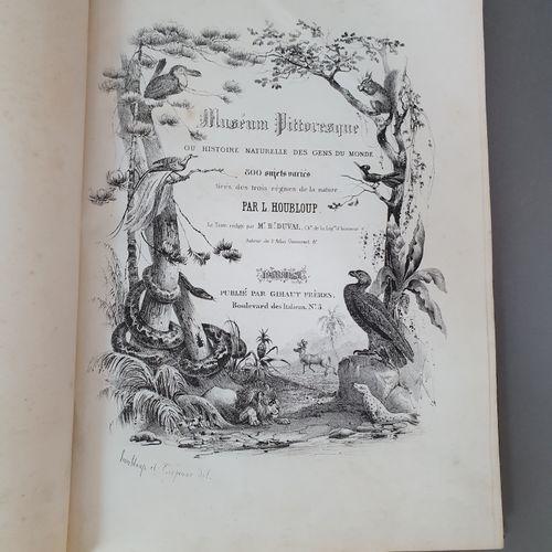 DUVAL (Henri). Muséum pittoresque ou Histoire naturelle des gens du monde. Paris…