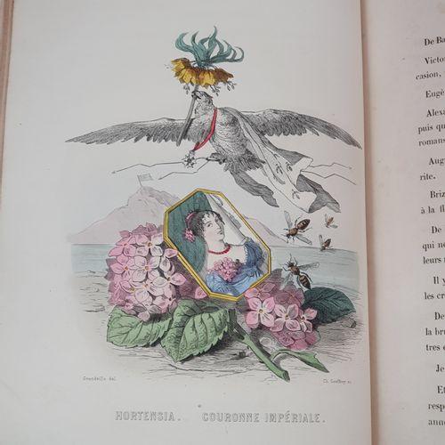 GRANDVILLE. Les Fleurs animées. Paris, Gabriel de Gonet, 1847. 2 tomes en un vol…