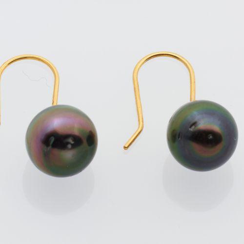 BOUCLES D'OREILLES PERLE DE TAHITI Pair of 9K yellow gold (375/°°) earrings hold…