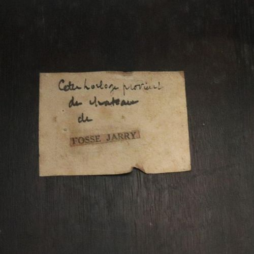 CAISSE D'HORLOGE DE PARQUET en chêne et placage d'acajou richement mouluré et sc…