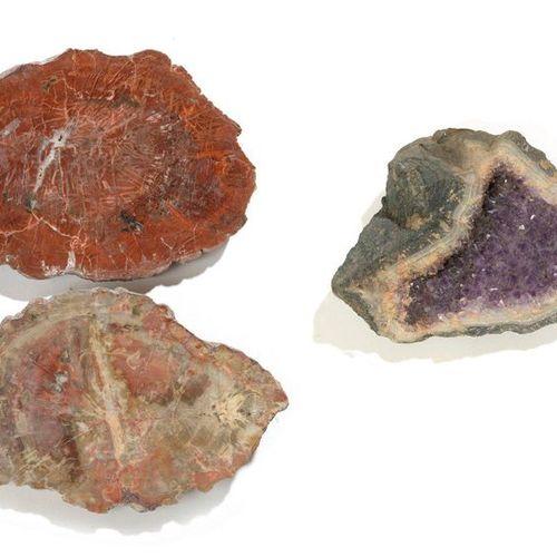Deux plaques de bois fossile, l'une de Madagascar la seconde d'Arizona  Très bel…