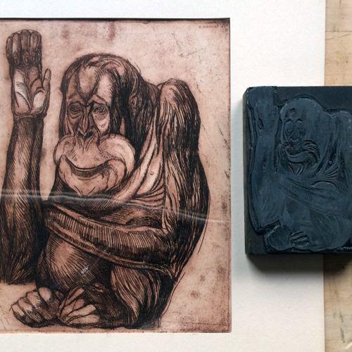 """André MARGAT (1903 1999) """"Orang Outang"""" Gravure sépia sur papier, porte la signa…"""
