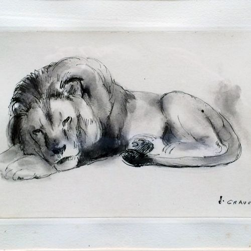 """Jean GRAVES (né en 1897) """"Lion dormant"""" Encre de chine et lavis sur papier, sign…"""