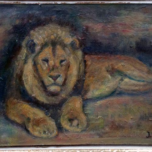 """Jean GRAVES (né en 1897) """"Lion couché"""" Huile sur papier encollée sur Isorel, sig…"""