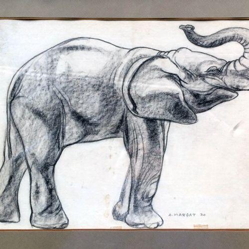 """André MARGAT (1903 1999) """"Eléphant trompe relevée"""" Crayon et fusain sur papier, …"""