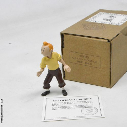TINTIN HERGÉ/PIXI  Collection Grands modèles  Tintin  Référence : 40000  Avec bo…