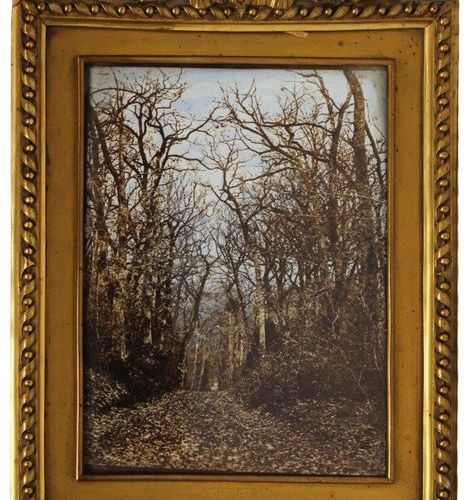 LAFON de CARMARSAC Pierre Michel (1821 1905). Undergrowth in winter, 1867. Photo…