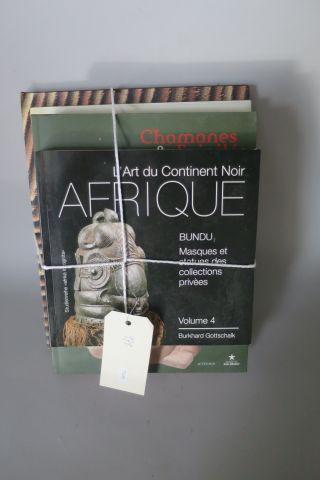 5 livres – L'art du continent noir – Afrique vol 4 – Chamanes et divinités de l'…