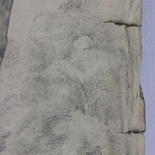 Ecole française du XIXème siècle.  Le vieil arbre.  Crayon.  H_43 cm L_34,5 cm