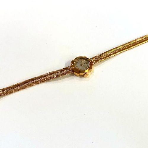 Montre bracelet de dame. Boîtier et bracelet en or jaune (750) 18K. Mouvement mé…