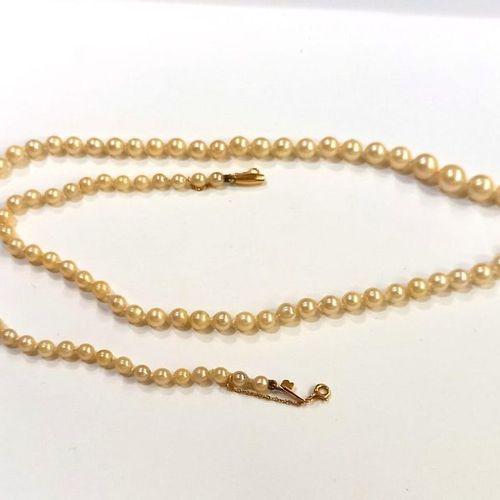 Collier composé d'un rang de perles de culture disposées en chute. Fermoir et ch…