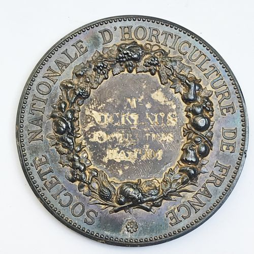 Société d'Horticulture de France. «Rosiers Tiges mai 1901 ».  Par A. Borrel. Mé…