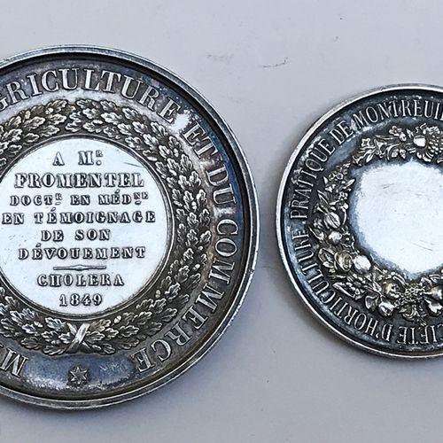 Lot de DEUX médailles en argent :  Ministère de l'Agriculture et du Commerce. Pa…