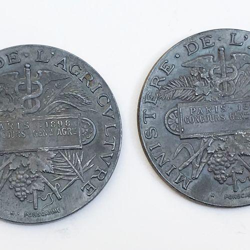 Lot de DEUX médailles en argent :  Ministère de l'Agriculture. Paris, Concours g…