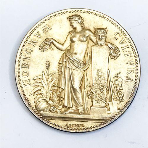 Société d'Horticulture de France. «Rosiers mai 1899 ».  Par A. Borrel. Médaille…