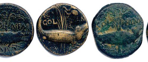 GAULE  SIX monnaies en bronze: 6 As de Nîmes au crocodile Agrippa et Auguste. O…