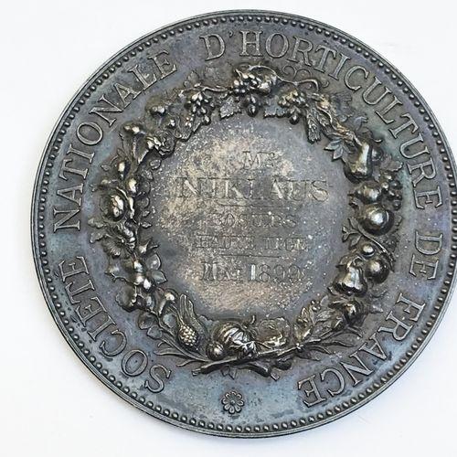 Société d'Horticulture de France. «Rosiers Haute Tige mai 1899 ». Par A. Borrel…