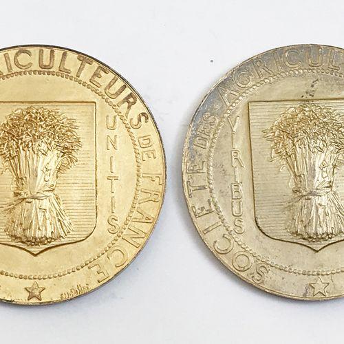 Lot de DEUX médailles en vermeil :  Société des Agriculteurs de France. Par Poll…
