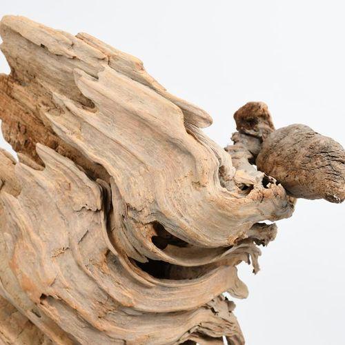 ‡ Sid Burnard (born 1948) Vulture, 2008 driftwood sculpture on wooden plinth sig…