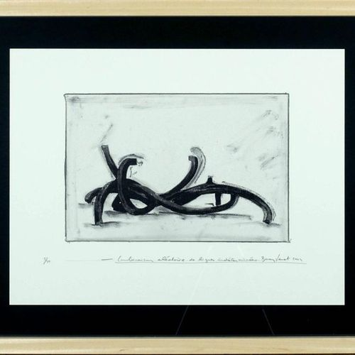Bernar Venet (1941). Random combination of indeterminate lines. Lithograph signe…