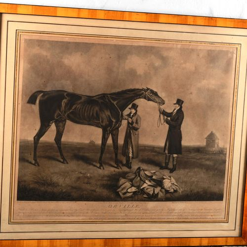 """English print from the 19th century.  """"Orville""""  Small tear and wetness"""".  Size …"""