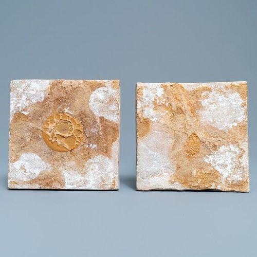 Deux carreaux en faïence de Delft polychrome figurant des oiseaux, 17ème Deux tu…