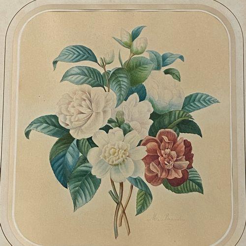 M. BRANDIN  Etude de fleurs  Aquarelle sur papier, signée en bas à droite. 38x3c…