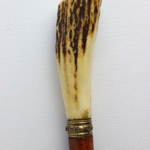 Sword cane, the varnished wooden shaft, the pommel in andouiller.  L_89 cm
