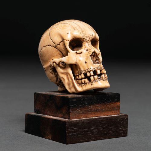 Crâne en ivoire sculpté. XXème siècle Il repose sur une base en bois .   Le cert…