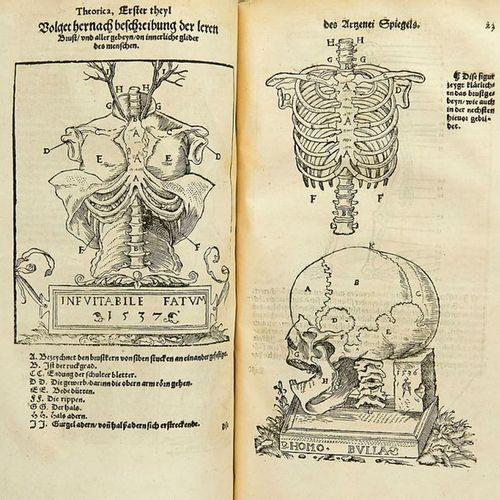 Medicine    Fries, L. And J. Dryander    I. Fries, Lorenz. Mirror of the artzney…