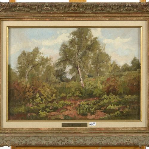 "VERHEYDEN Isidore (1846 1905) 镶嵌在画布上的油彩,""查看一个营地的风景""。签名右下角是。维尔海登。比利时的学校。尺寸:+/ 34.…"
