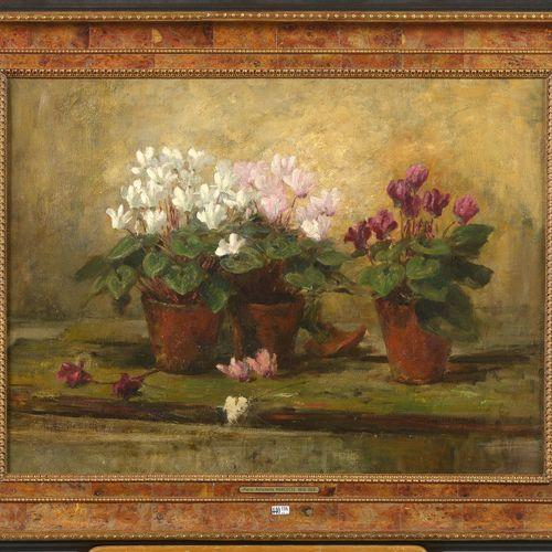 """MARCOTTE Marie Antoinette (1869 1929) Huile sur toile marouflée sur toile """"Natur…"""