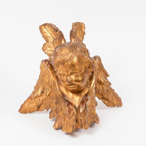 Head of a four winged cherub in carved and gilded wood.  Element.  18th 19th cen…