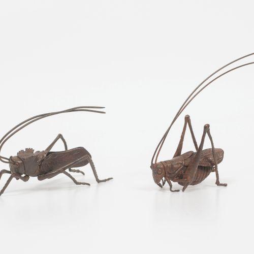 JAPON, début du XXème siècle Cricket and grasshopper in patinated bronze.  Lengt…