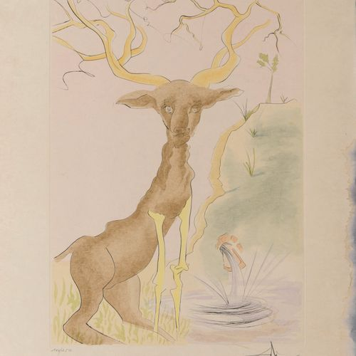 Salvador DALI (1904 1989) The stag seeing himself in the water, 1974.  Plate fro…